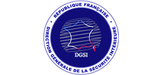 Logo DGSI